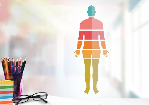 Colorful Human Body sections and educational objects