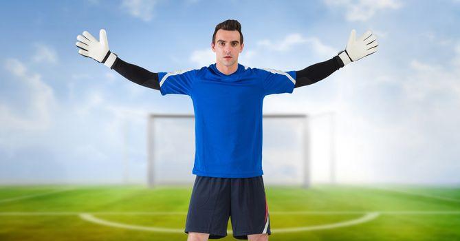 Soccer goalkeeper in goal