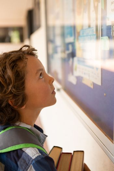 Schoolboy looking at noticeboard in the corridor