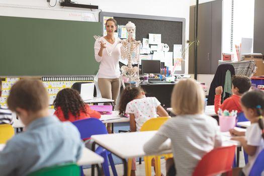 Teacher explaining to school kids human body thanks to a dummy human skeleton