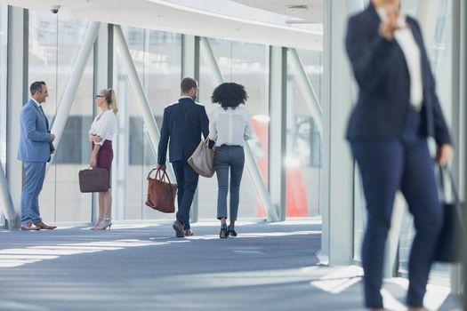 Rear view of diverse business people walking in corridor in modern office