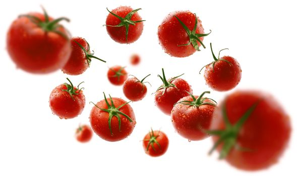 Red tomatoes levitate on a white background.