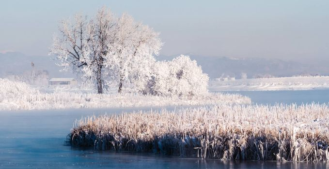 Winter on the Colorado plains.