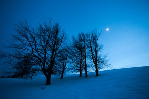 Fairy winter night landscape with snow and moon in a mountain hill