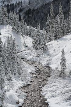 The Scenic Beauty of Colorado
