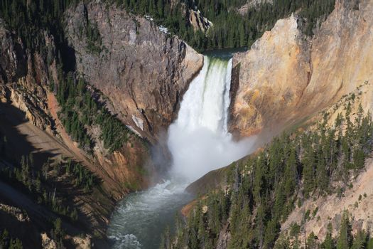 Yellowstone River's Lower Falls in Yellowstone National Park