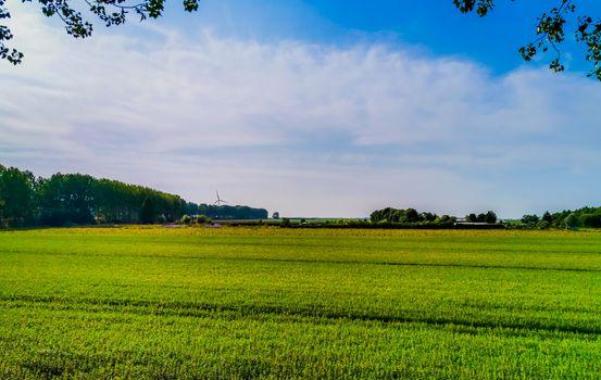 beautiful green farm lands in Sint Annaland, touristic town in zeeland, The Netherlands