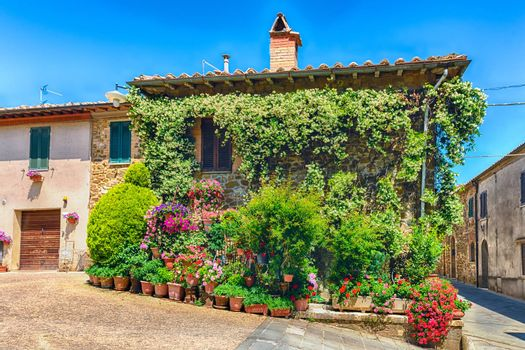 Colorful flowers and plants decorating buildings in the town of Montalcino, Tuscany, Italy