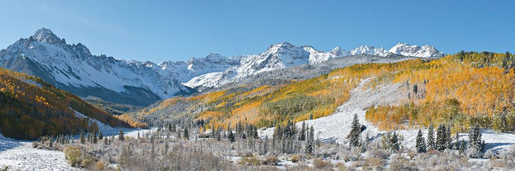 Autumn snow blankets the Dallas Divide. Golden Leaves of Aspen Trees in the Beautiful Rocky Mountains of Colorado.