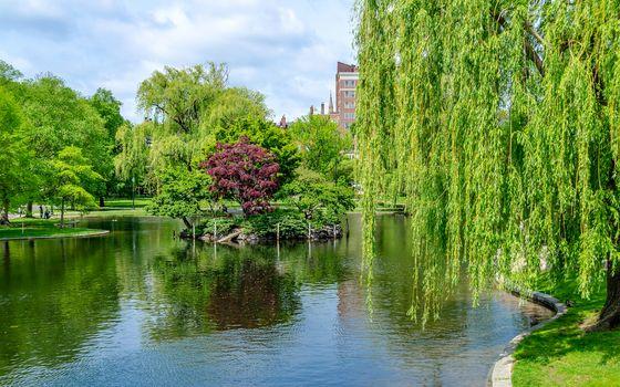 Idillic view in the scenic Boston Public Garden, USA