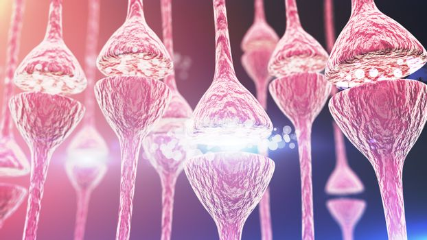Synapse and Neurons Connections Like Human Bones