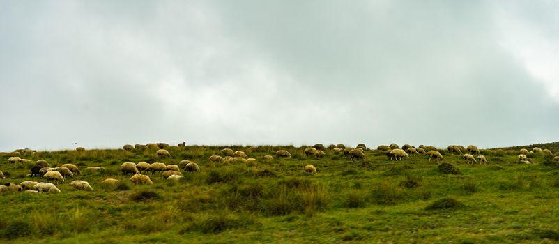 Rural mountain landscape