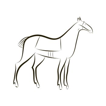Contour silhouette of graceful horse. Black vector outline horse. Idea for design stables, farms, races, tattoo, coloring, Zenart, stickers, logo, badge. Animals vector graphics Minimalism style
