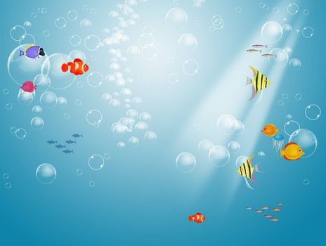 illustration of seabed