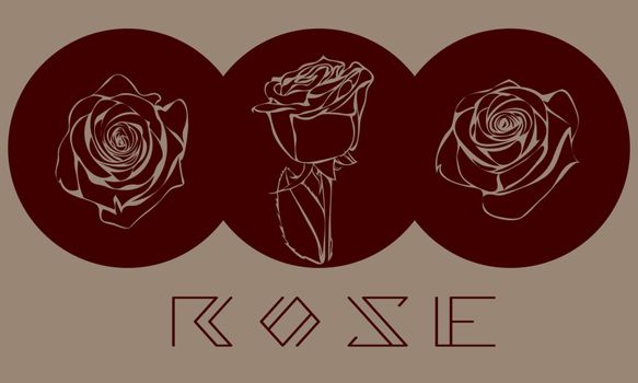 Three elegant hand drawn roses in dark red circles on beige background