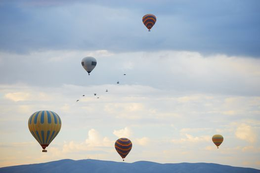 Hot air balloons and birds flying over the mountains