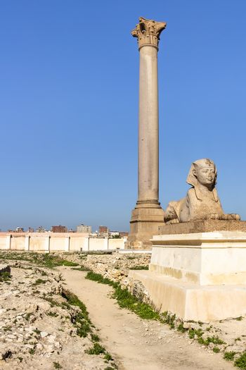 Pompey's Pillar and sphinxes made from red granite stands beside the ruins of the temple of Serapis