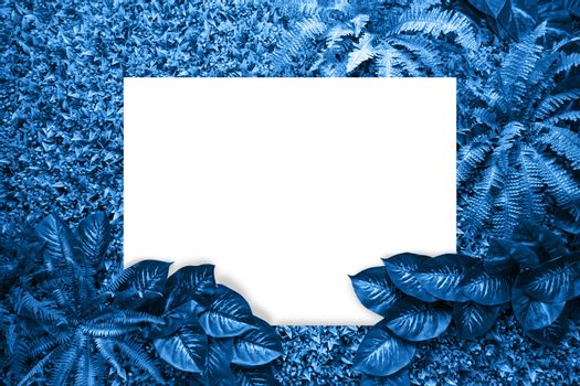 Classic blue color background from leaves and white blank for your design or text. Pantone color of the year 2020.