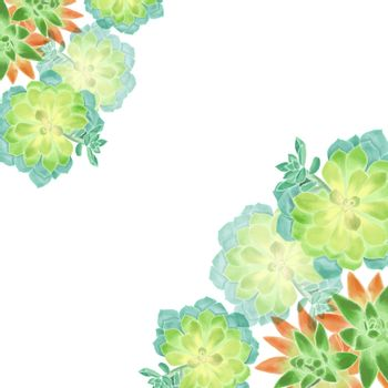 Hand drawn illustration of Watercolor succulents on white background. Botanical Floral bouquet for card design