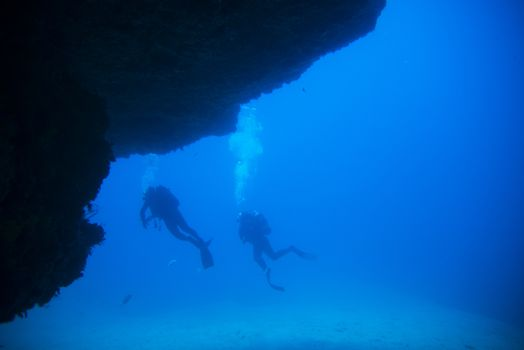 diving in the reef, fuerteventura, canary islands