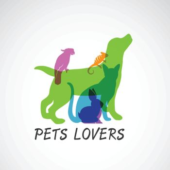 Vector group of pets - Dog, cat, parrot, chameleon, rabbit,  isolated on white background, Vector pets for your design. Animal group.