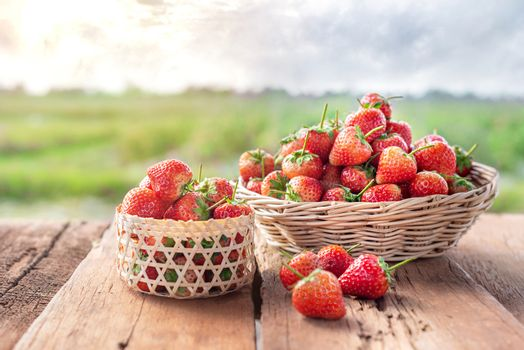 fresh ripe strawberries in basket over wooden floor with green field background