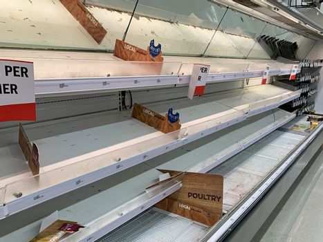 Dayton, OH- Mar 25, 2020: Empty meat rack at meijer grocery store. Shelves picked over, and containing virtually no meat for purchase. Coronavirus scare 2020