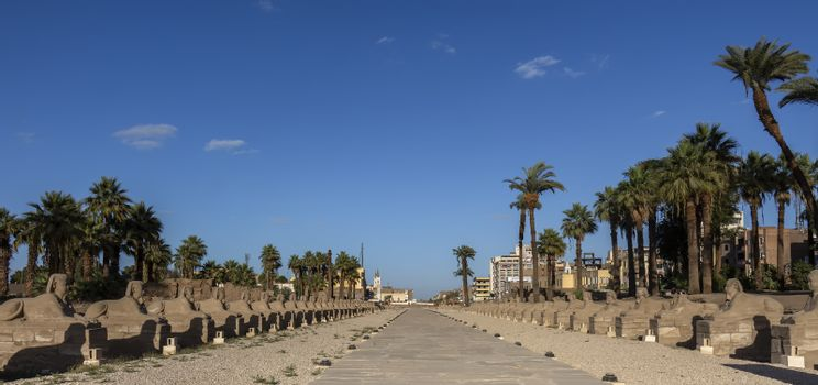 Luxor Temple Sphinxes is an avenue of human headed Sphinxes connecting Luxor Temple and Karnak