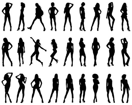 Silhouettes of beautiful and sexy girls on a white background