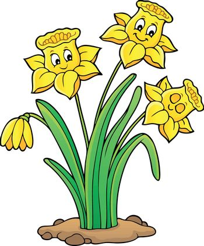 Narcissus flower theme image 1 - eps10 vector illustration.