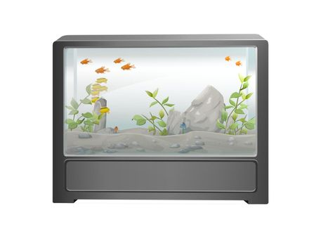 beautiful aquarium on white background - 3d rendering
