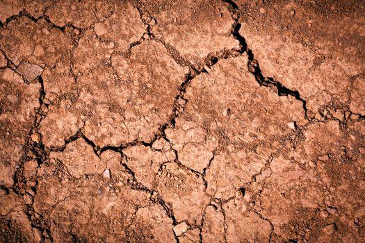 reddish brown soil with cracks