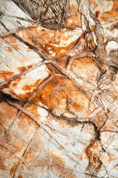 quartz veins on limestone rock