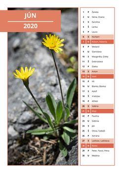 Slovak calendar with names for June 2020
