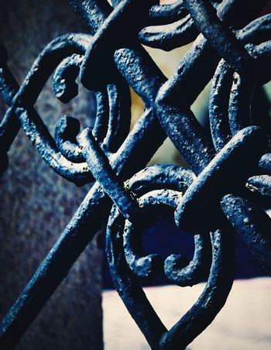 detail black iron forged gate