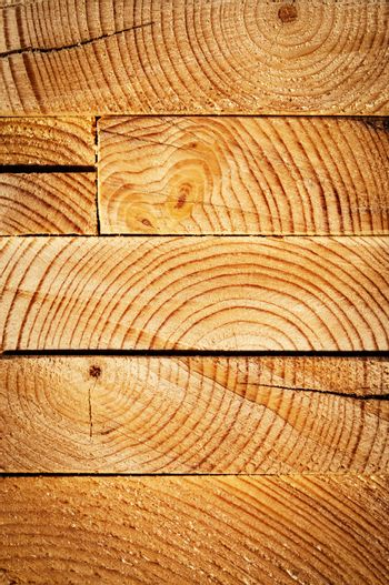 on cut of wooden beam