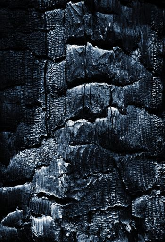 dark detail of burned wood