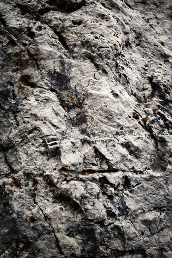 abstract surface of gray limestone