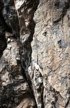 detail limestone rock with a metal rivet