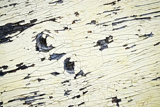 cracks on the paint timber