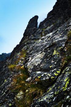 detail of mountain rock