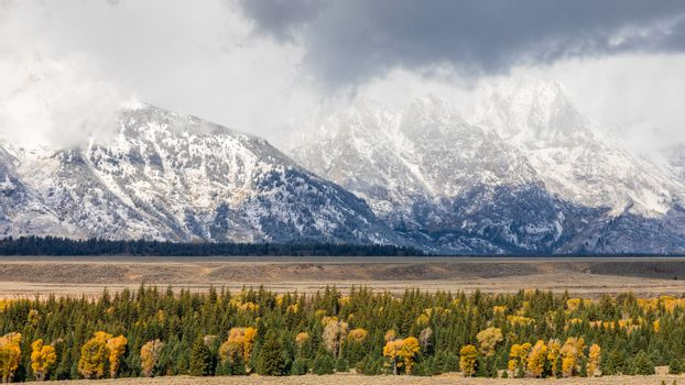 Snow cover mountains peak of Grand Teton surrounding by colorful trees in autumn of Grand Teton National Park, Wyoming, USA.