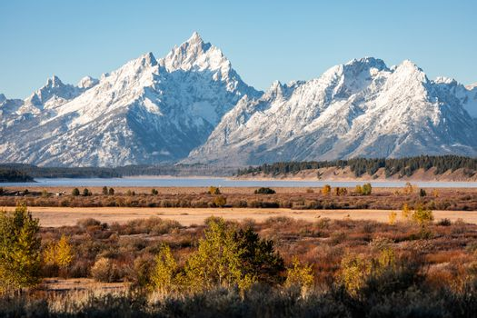 Snow cover mountain peak of Grand Teton and Mount Moran outstanding in blue sky beside Jackson Lake and Willow Flats of Grand Teton National Park, Wyoming, USA.