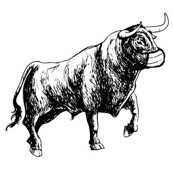 Freehand illustration of bull with mask on white background, doodle hand drawn