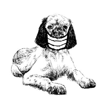 freehand sketch illustration of English setter dog with mask doodle hand drawn