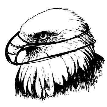 Black and white eagle with mask hand drawn on white background