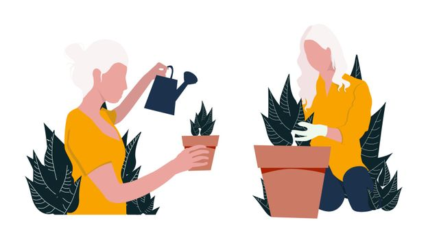 Girl watering flowers. Woman replants houseplants. Vector illustration on a white background.