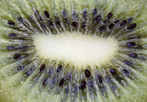 Macro Close Up Fruit Kiwi seeds colorful green