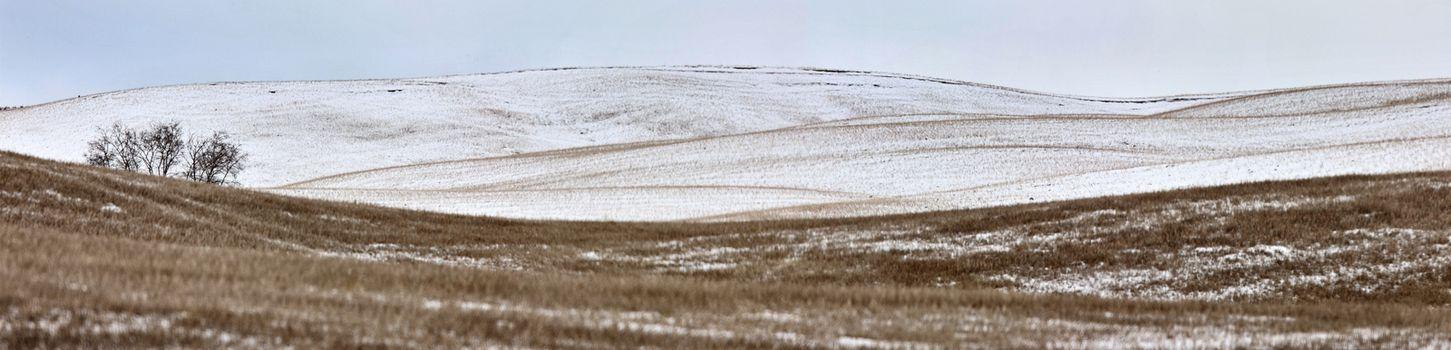 Landscape Saskatchewan Prairie Rurual Scene Panorama snowfall