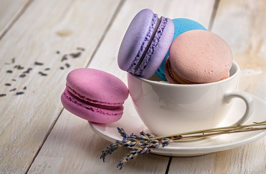 Macaroons in cup with lavender on saucer